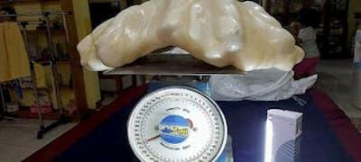 La perla más grand del mundo